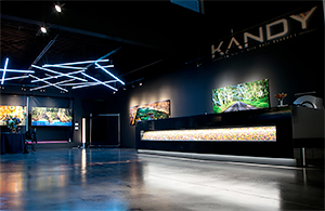 Neil Dankoff and Kandy Gallery