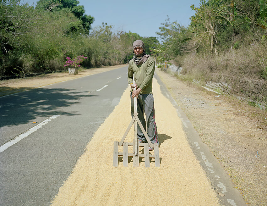 Jason Reblando - Man Drying Rice, Bataan