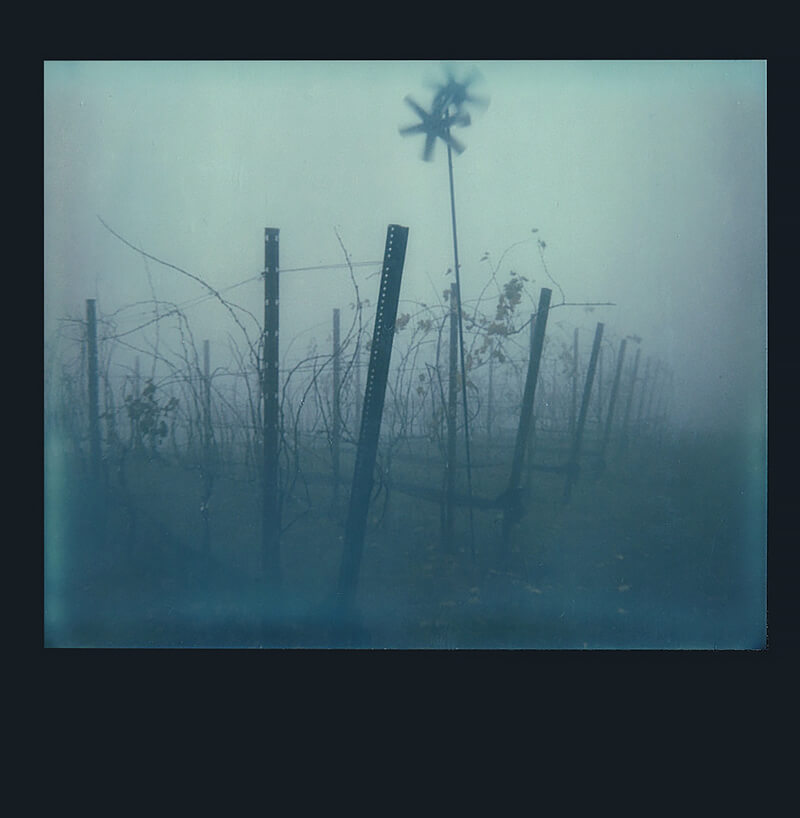 Cromwell Schubarth - Loma Prieta