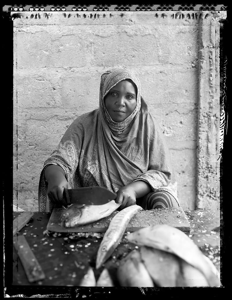 Laena Wilder - Marym Fishseller
