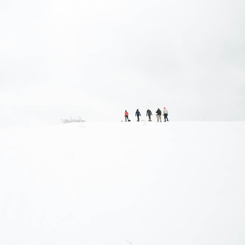 Cig Harvey - Girls Walking