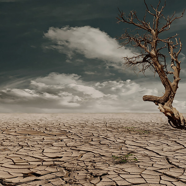 Photography and Climate Change Awareness - Part 1