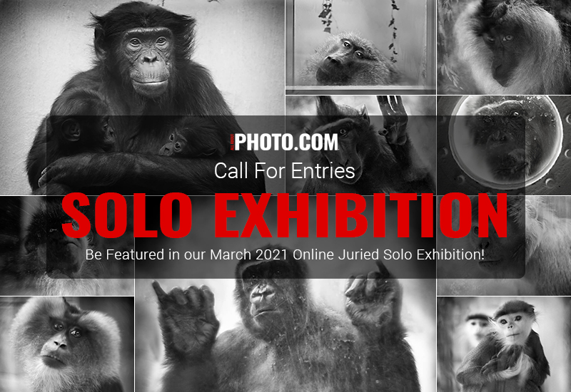 AAP Solo Exhibition March 2021