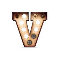 The V in Venice
