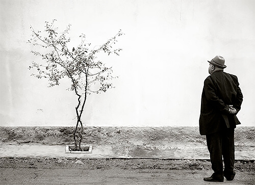 Man and tree, Kukes, Albania 2012<p>© Kristoffer Albrecht</p>