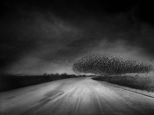 A page of flace<p>© Angela Bacon-Kidwell</p>