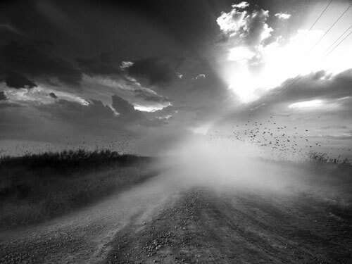 Drifting Grey<p>© Angela Bacon-Kidwell</p>