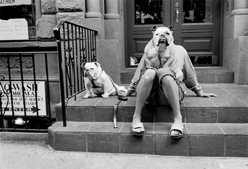 Elliott Erwitt - The Bulldog Lady