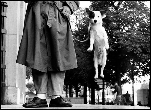 Elliott Erwitt - Paris. 1989 © Elliott Erwitt/Magnum Photos CC-BY-SA-4.0