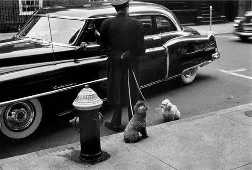 Elliott Erwitt - New York City. 1953