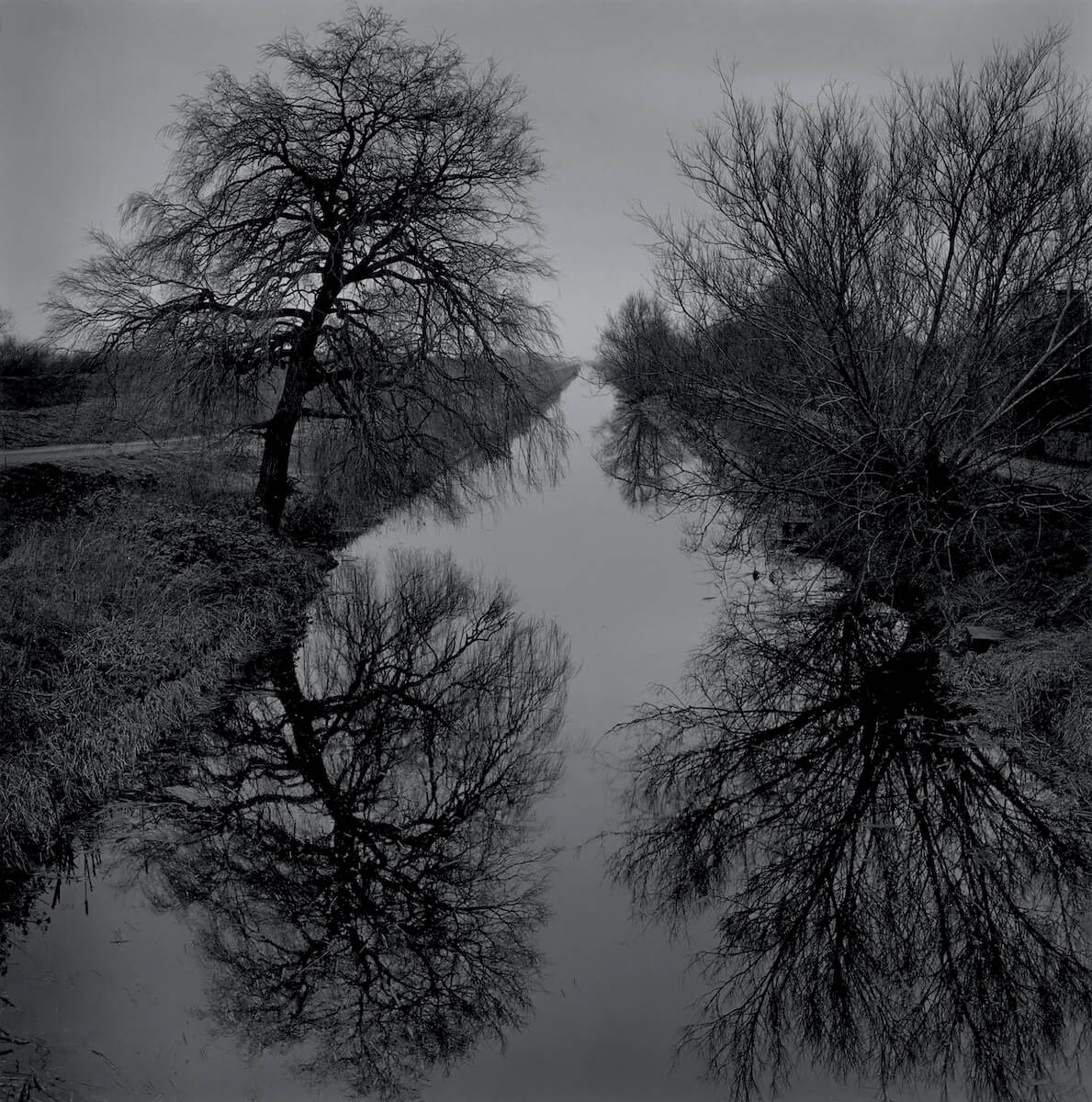 Old Bedford River (2019) from the series RECLAIMED<p>© Paul Hart</p>