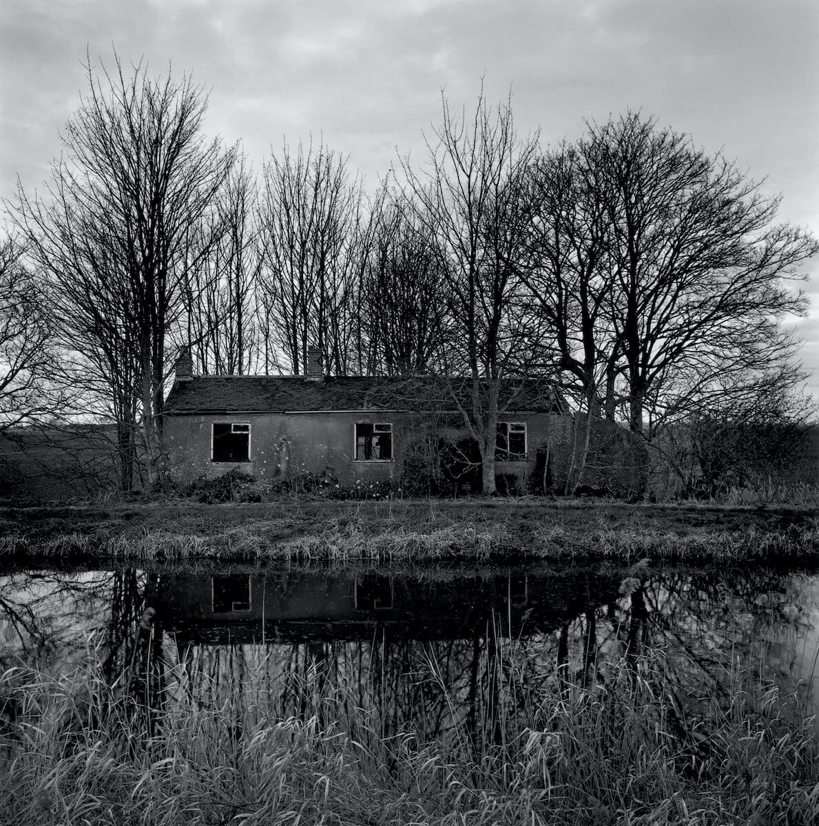 Walsingham Fen (2019) from the series RECLAIMED<p>© Paul Hart</p>
