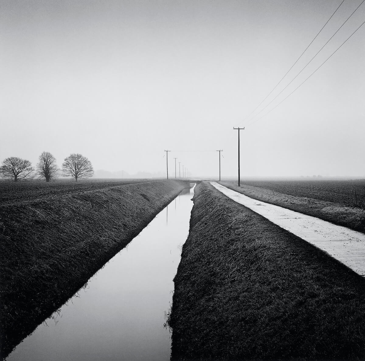 Holbeach St. Matthew (2010) from the series FARMED<p>© Paul Hart</p>