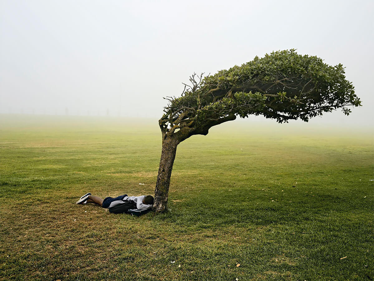 Pieter Hugo - From the series Kin, Green Point Common, Cape Town, 2013 - Digital C-Print ©Pieter Hugo, Courtesy Yossi Milo Gallery, New York