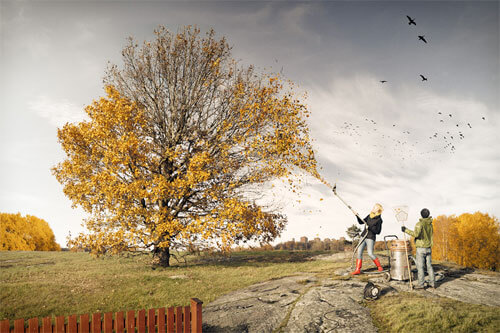 Helping fall<p>© Erik Johansson</p>