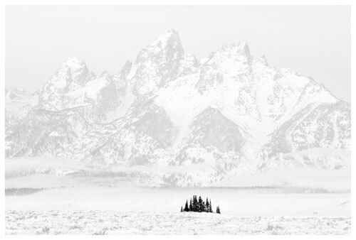 Chuck Kimmerle - Tetons and Trees, Grand Teton National Park
