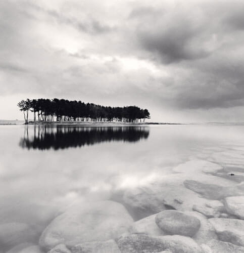 Michael Kenna - Pine Trees, Study 3, Wolcheon, Gangwondo, South Korea, 2011