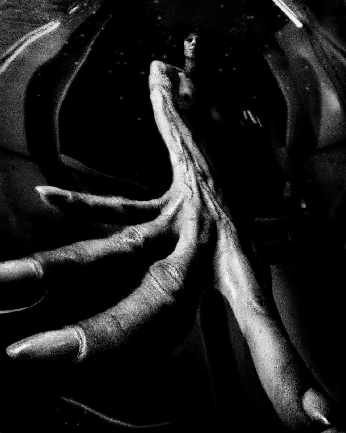 Distorsion 2013<p>© Betina La Plante</p>