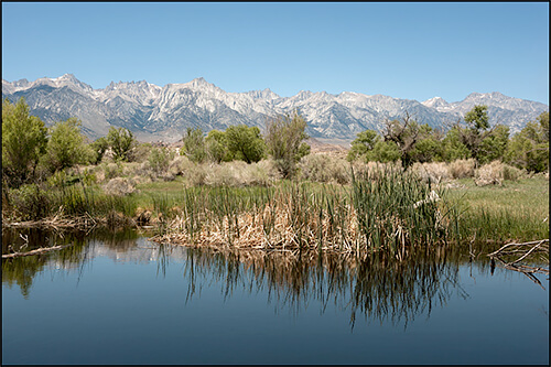Jennifer Little - Restored Section of the Lower Owens River, Owens Valley, CA, 2012