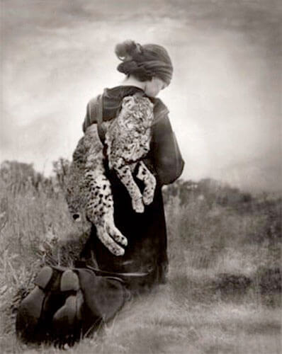 Beth Moon - JOURNEY OF THE BOBCAT