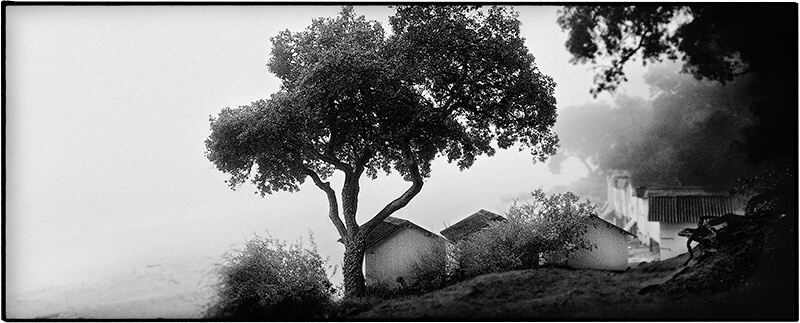 Huts and tree<p>© Philippe Marchand</p>