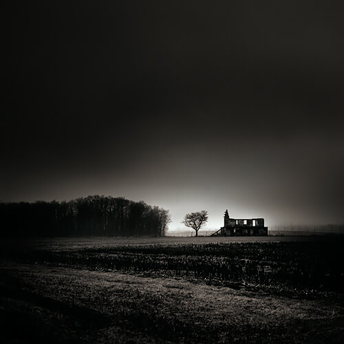 Home Alone<p>© Ebru Sidar</p>
