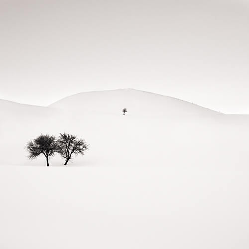 Don<p>© Ebru Sidar</p>