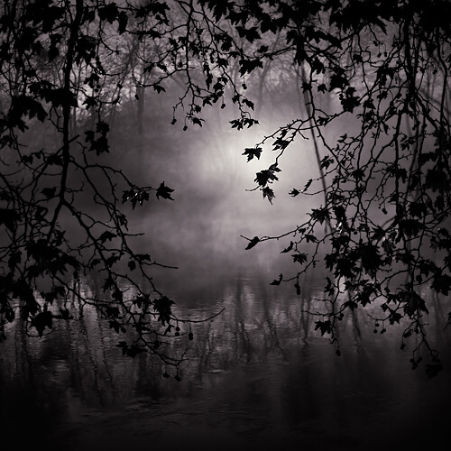 The Eye of the Night<p>© Ebru Sidar</p>