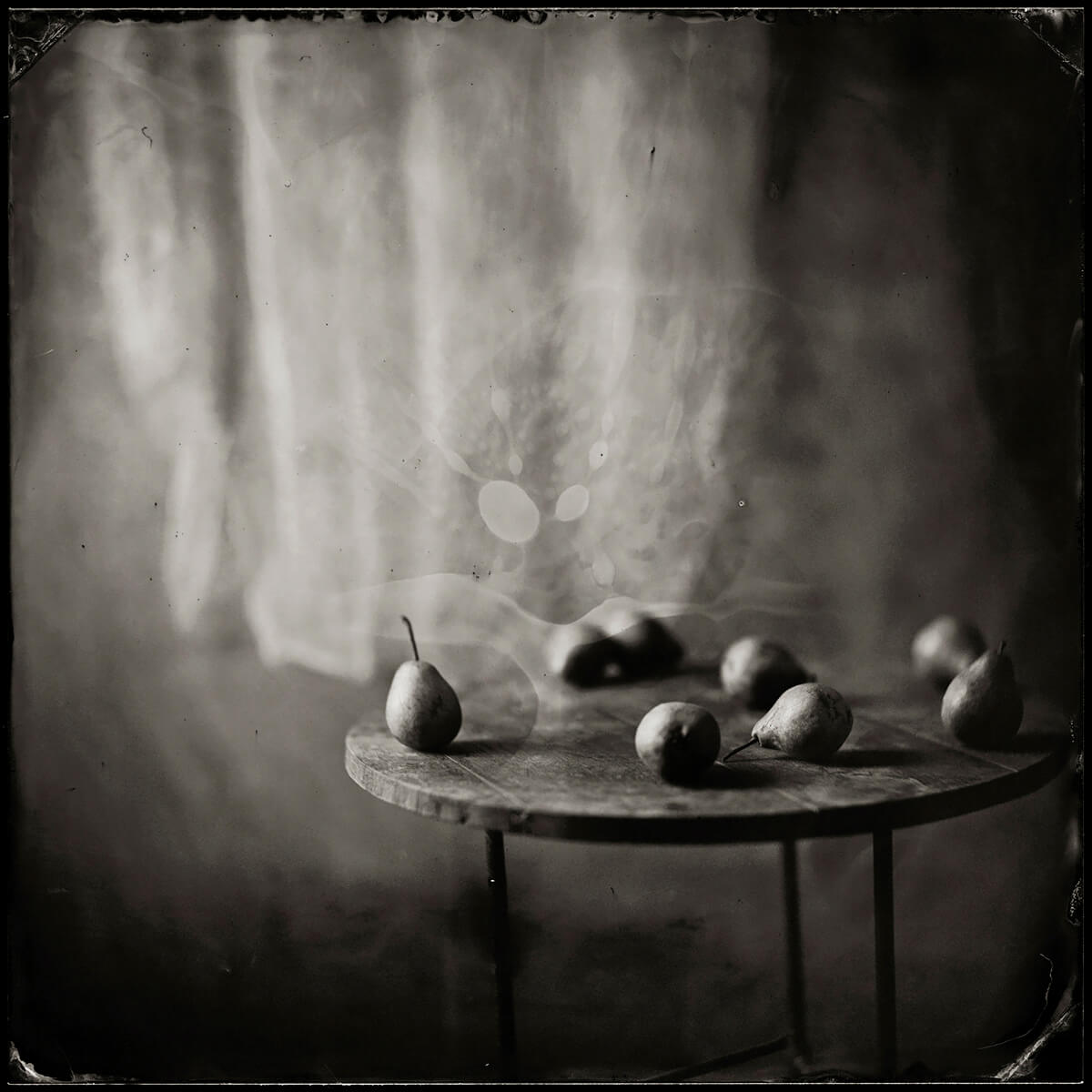 Pears In The Afternoon 2015<p>© Karoline Schneider</p>
