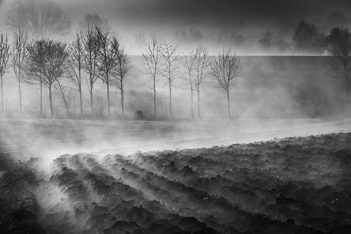 Foggy land<p>© Eddy Verloes</p>