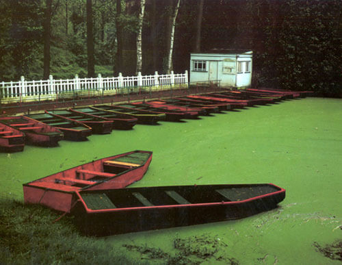 Punts, Les Quesnoy, France 1983<p>© Cole Weston</p>