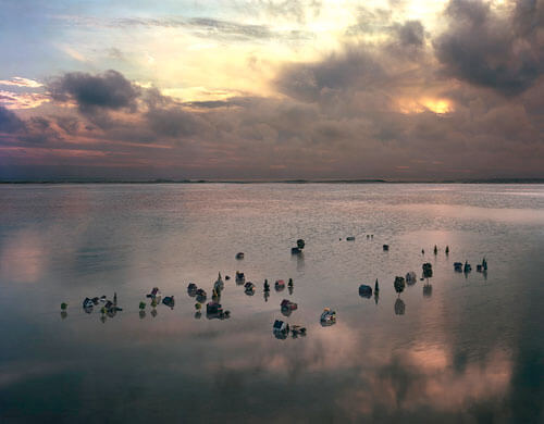 After the Rain, 2012<p>© Thomas Wrede</p>