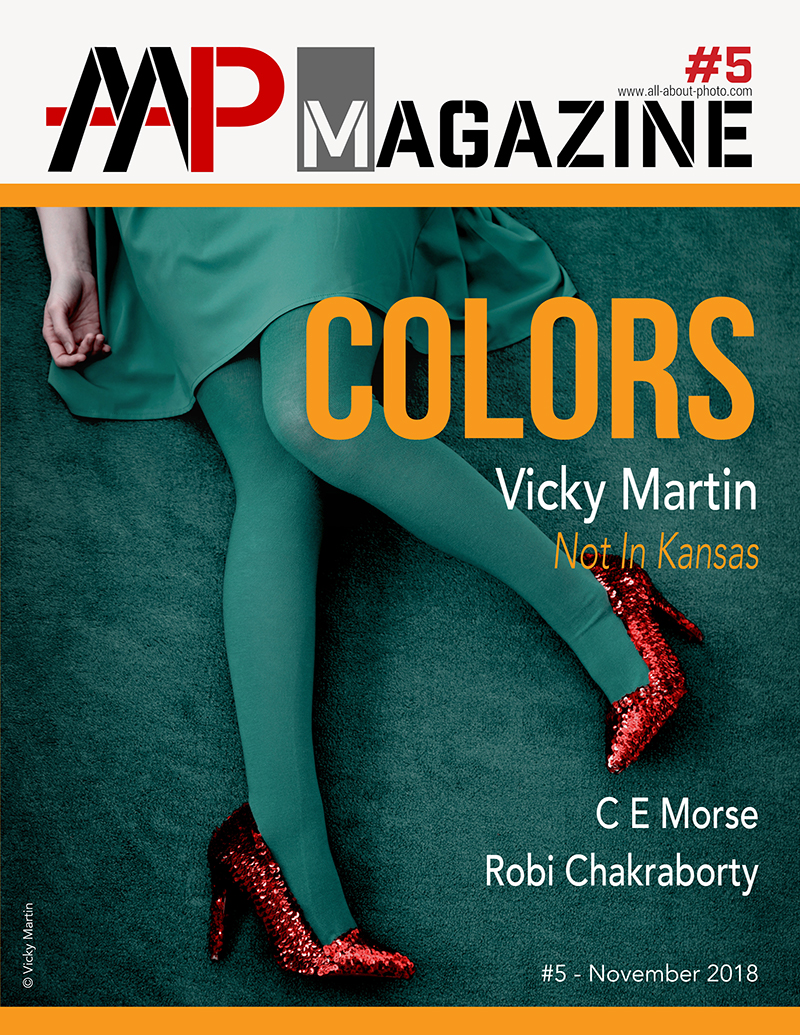 AAP Magazine #5: COLORS