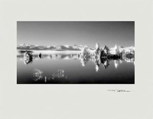 Mitch Dobrowner: Prism Series Book #2