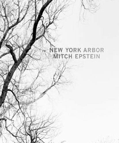 Mitch Epstein: New York Arbor