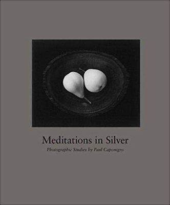 Meditations In Silver: Photographic Studies By Paul Caponigro