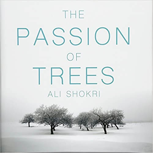 The Passion of Trees